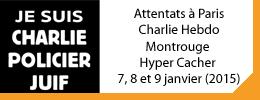 AFVT_Attentats_Paris_janvier_2015-Bouton_Attentat